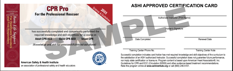 bls certification support basic training institute safety